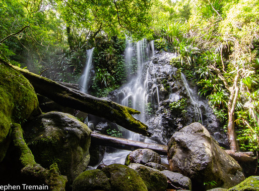 Chalahn Falls - Lamington National Park