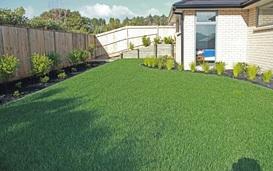 lawnss