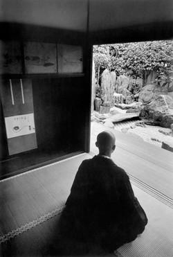 Zen soto