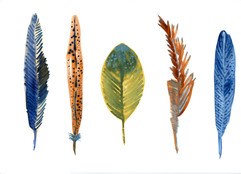 thank-you-card-feathers.jpg