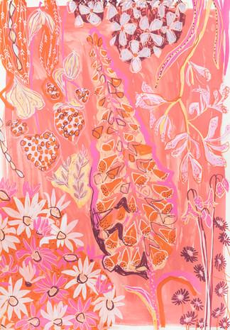 Pinks & Browns III