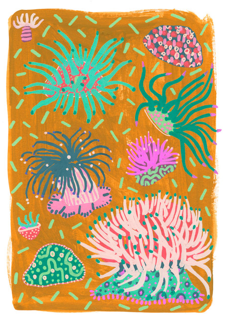 Lucy Innes Williams - Orange Anemone.jpg