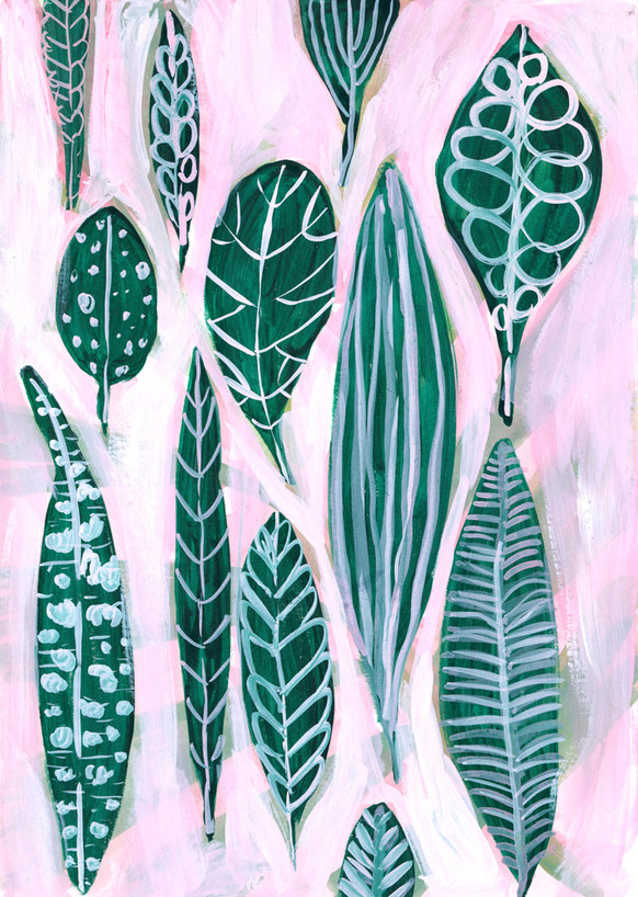 Pink Ground, Green Leaves