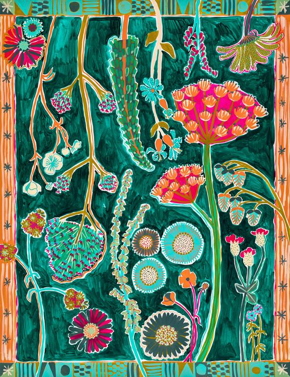 Pendennis Head Wildflowers