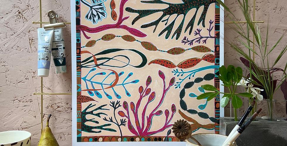 Super Seaweed A3 Print