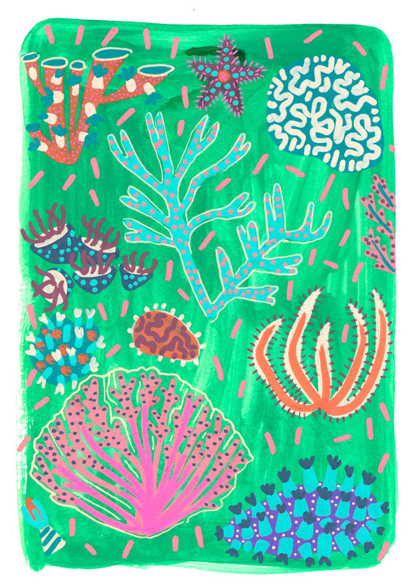 Lucy-Innes-Williams-Emerald-Corals.jpg
