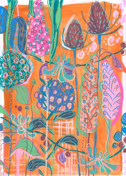ORange-Beauty-web.jpg