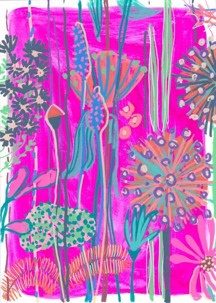 Pink Garden House