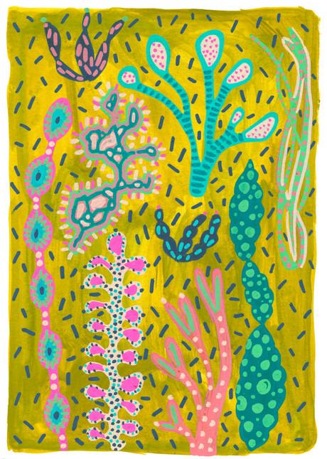 Lucy-Innes-Williams--Olive-Seaweed.jpg