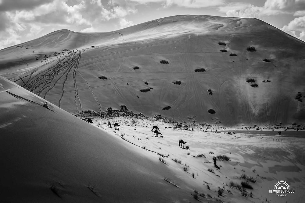 Marruecos desierto del Sáhara Mario Marty
