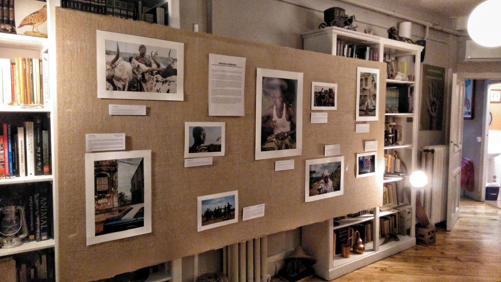 Soporte de Mirada Humana durante la exposición en el Gabinete de Historia Natural de Madrid