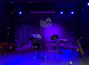 Concert Blue Monkeys