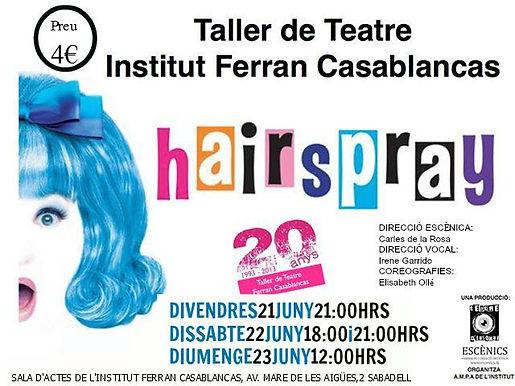 12 Hairspray 1.jpg