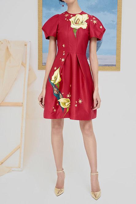 ARUM-PAINTED MINI RED DRESS