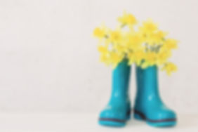rubber boots and spring flowers on white
