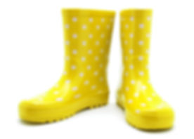 Gumboots. Isolated on white..jpg