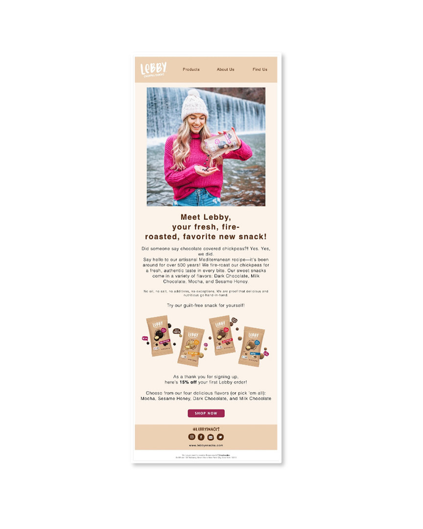 Email Marketing Layout Sample