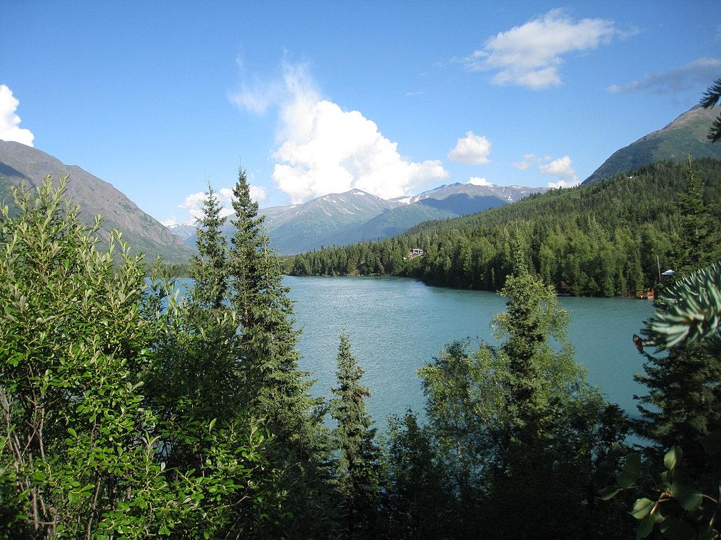 Gwins Lodge Alaska Lodge Restaurant Amp Cabins On The
