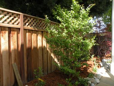 Fence-Wood