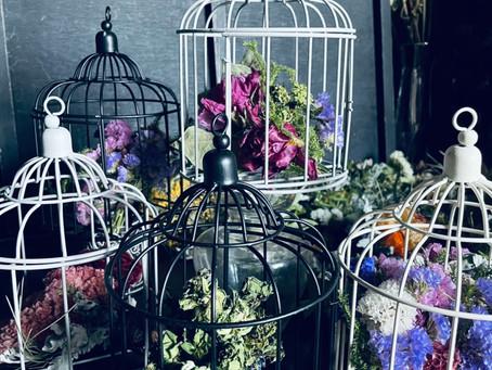 【Pick up】flower studio mar