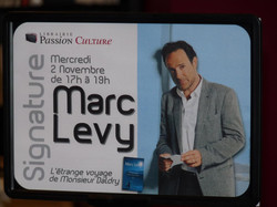 levy (4)