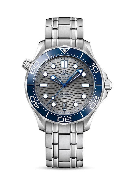 Seamaster Diver 300M Silver 210.30.42.20.06.001