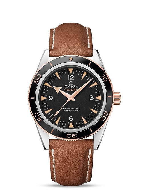 Seamaster 300 Steel & Gold 233.92.41.21.03.001