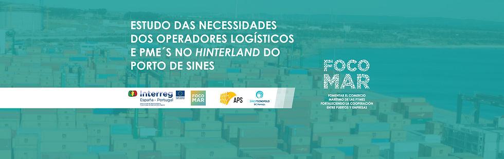 Estudo das necessidades dos operadores logísticos e PME´S no hinterland do Porto de Sines