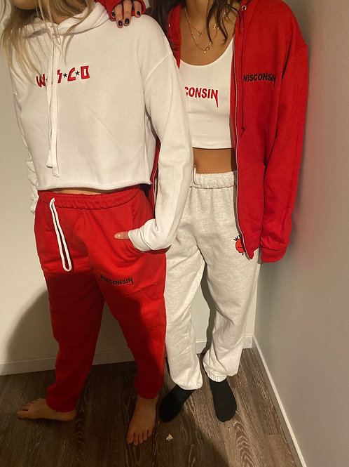 cropped embroidered wisconsin hoodie