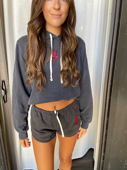Wisco Terry Cropped Hoodie