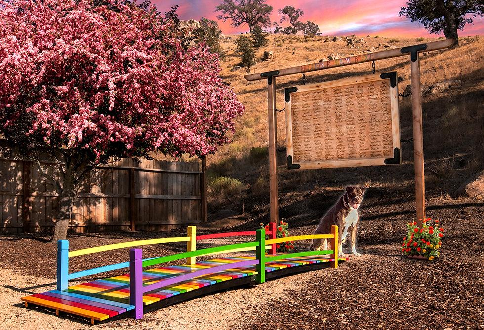 rainbow bridge v2.jpg