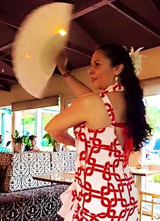 Live Spectacular Flamenco Shows in Melbourne with Flamenco Fiesta:Paul & Belinda Martin