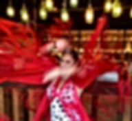 Flamenco Shows in Melbourne : Live Spanish Guitar & Flamenco Dancer : Paul & Belinda Martin : Events/Functions/Cultural Festivals : Flamenco Fiesta /Professional Shows & Fun Fiesta Workshops Melbourne Victoria Australia