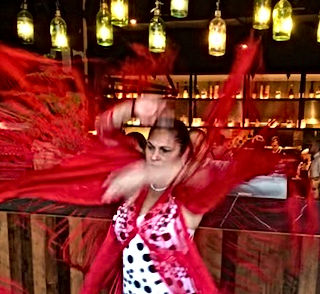 Professional Flamenco Shows in Melbourne : Performances for Events Functions & Cultural Festivals : Flamenco Fiesta Paul & Belinda Martin : Spanish Guitar & Flamenco Dancer
