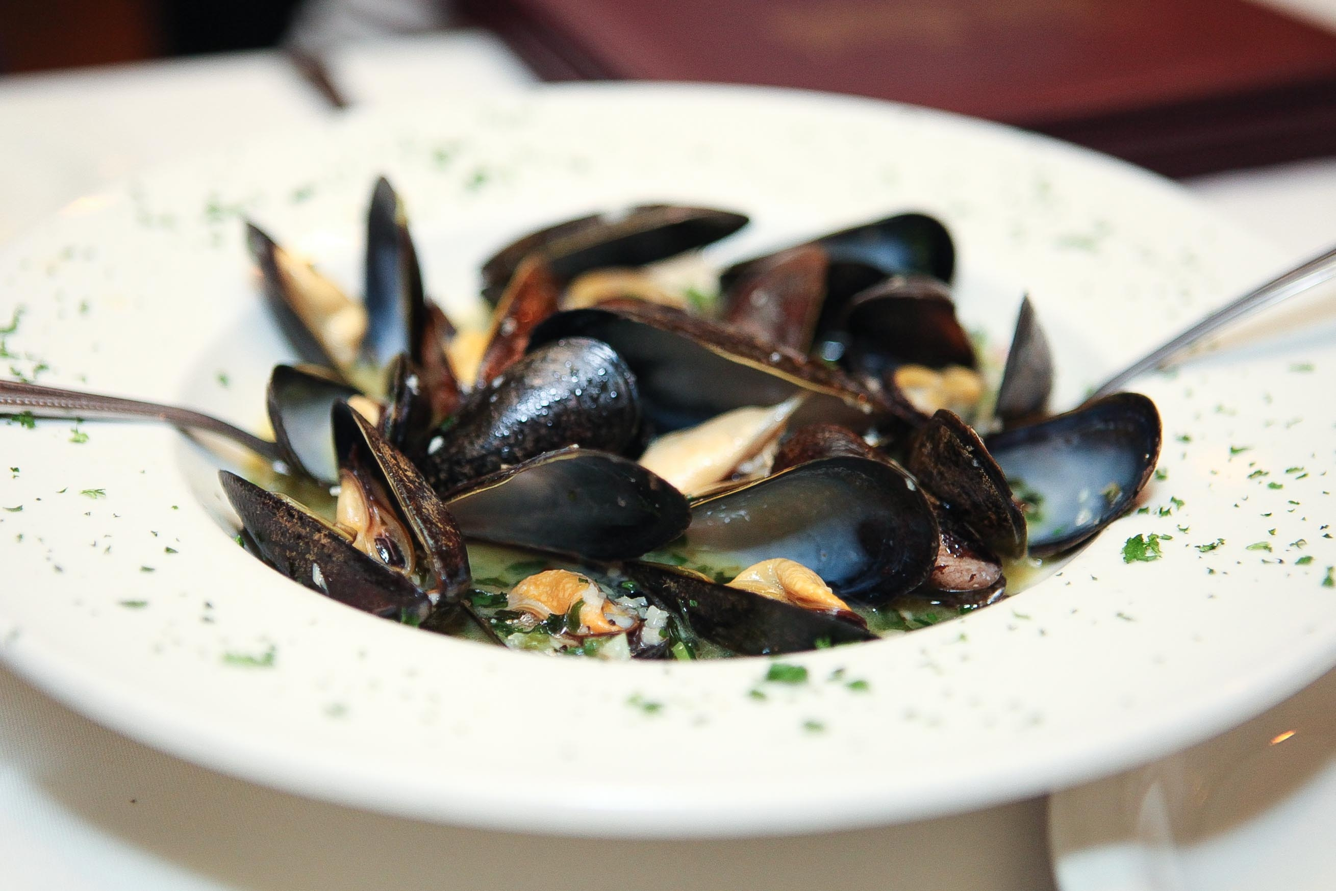 Mussels-2.jpg