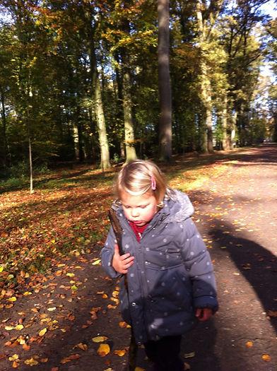 walking in woods sophia toddler.jpg