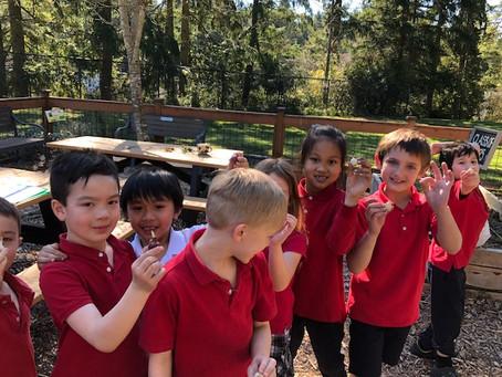 1st Grade in the Garden!