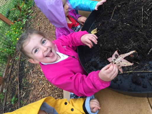 Kindergarten Explores Soil Food Web