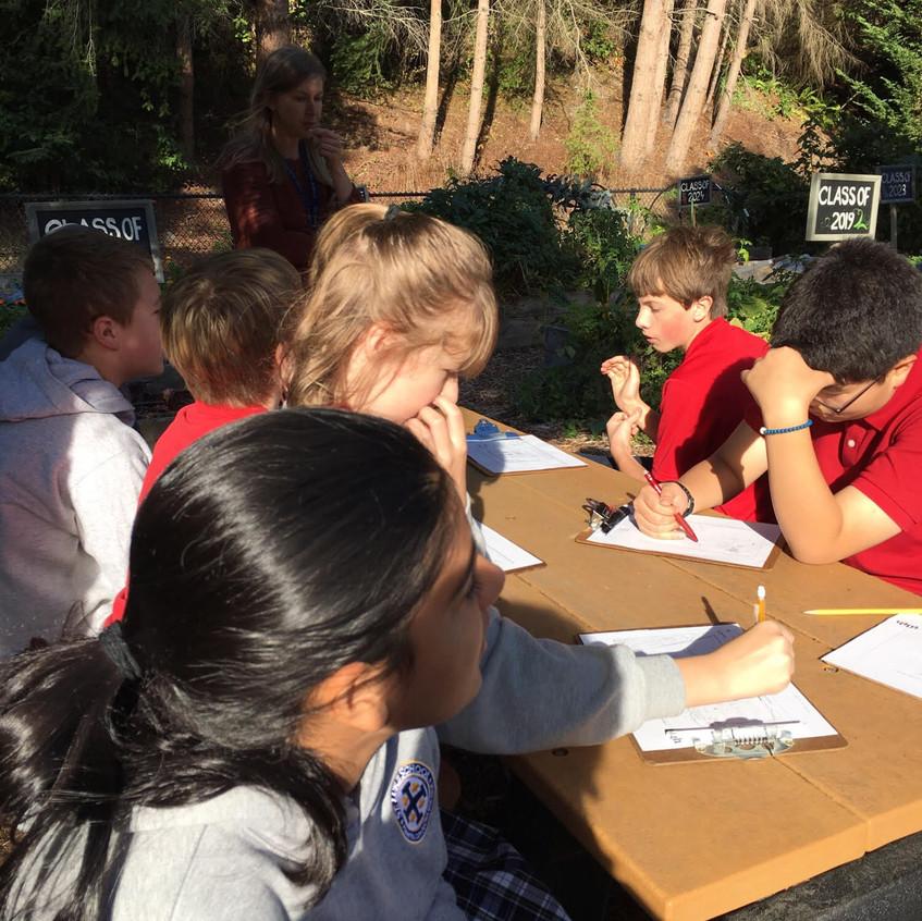 Garden Observations Group
