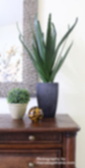 Home staging plants and accessories
