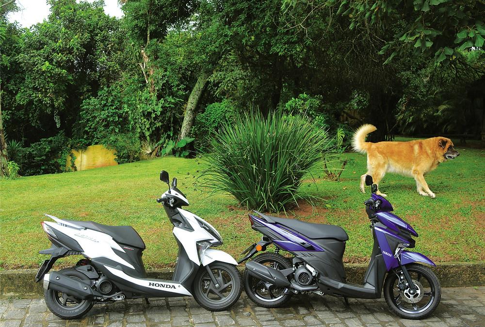 Honda Elite e Yamaha Neo