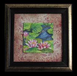 * Waterlilies *