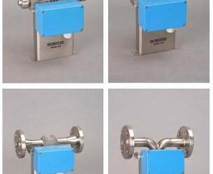 Coriolis Flow Meter RHM03