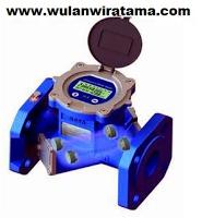 Ultrasonic Flowmeter TDS100W