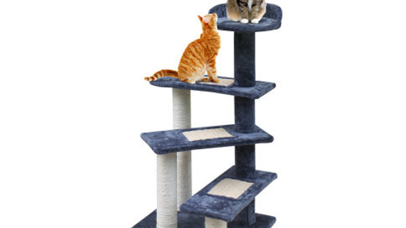 i.Pet Cat Tree 100cm Trees Scratching Post Scratcher Tower Condo House Furniture