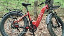 Aventon Aventure Ebike Review: Budget-conscious but Bold
