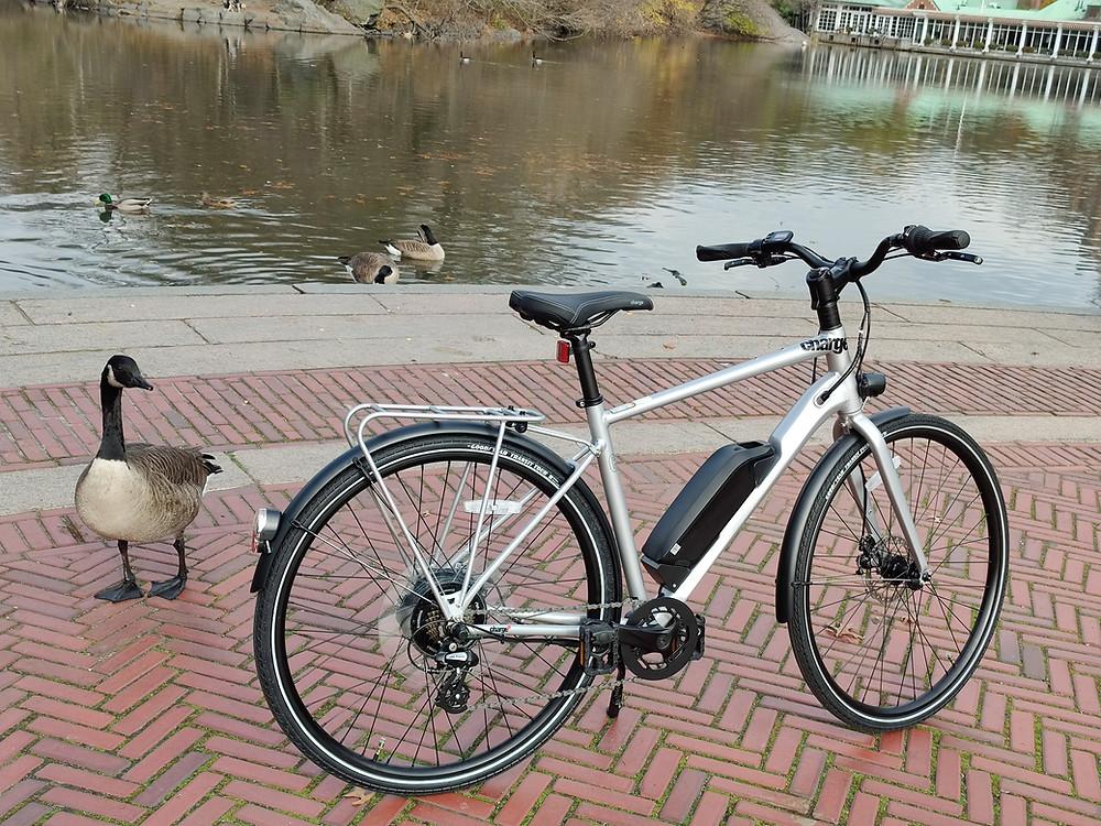 Charge Bikes City