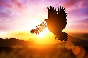 Silhouette of Dove carrying olive leaf b