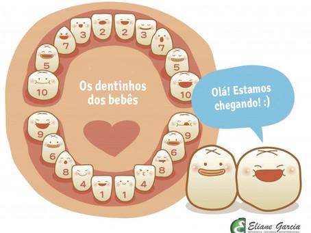 Ordem de nascimento dos dentes do bebê