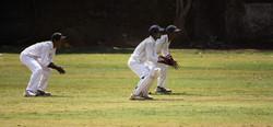 Cricket Teammates